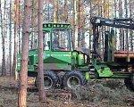 beim Holzrücken