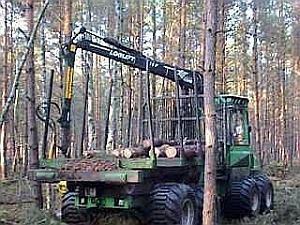 Das Shuttle beim Rücken von Sägeholz
